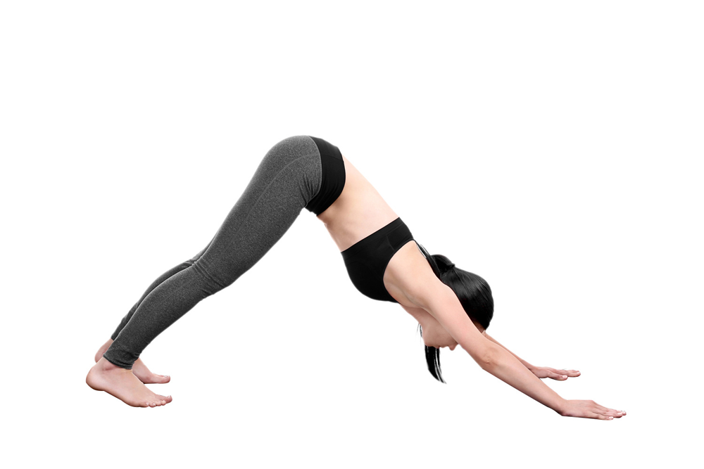 Pose Five - Downward Facing Dog